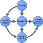 OneScalp od Nanogen nie tylko na łysienie